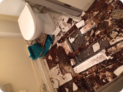 This is the destruction from an unchecked leaking shower fitting (3)